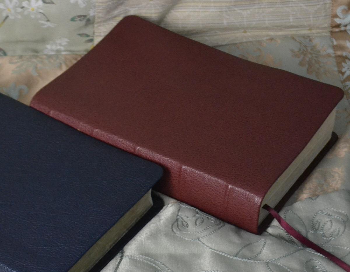 Leather-Lined River Grain Goatskin Style | Leonard's Book